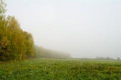 Campi e foreste nella caduta in Russia centrale - gialla, inchiostro verde e arancio Fotografie Stock