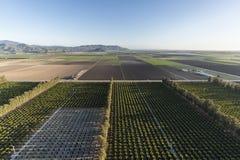 Campi e frutteti dell'azienda agricola di California aerei Fotografia Stock Libera da Diritti