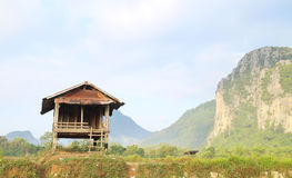 Campi e montagna e cottage Immagine Stock