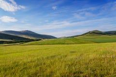 Campi e montagne basse di Khakassia fotografie stock