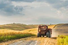 Campi e pace nel sole caldo della Toscana, Italia Immagini Stock