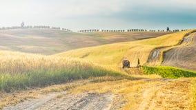 Campi e pace nel sole caldo della Toscana, Italia Fotografie Stock