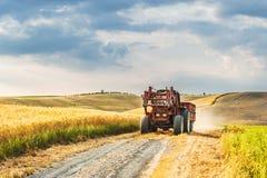 Campi e pace nel sole caldo della Toscana, Italia Immagine Stock Libera da Diritti