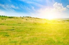 Campi ed alba verdi collinosi su un cielo blu Fotografia Stock