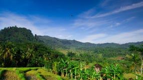 Campi, montagne e cielo blu Fotografie Stock Libere da Diritti