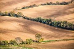 Campi moravian famosi in repubblica Ceca Paesaggio di viaggio e della natura Ceco Toscana Fondo di autunno della natura fotografia stock