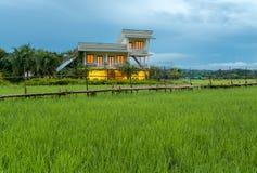 Campi nel paesaggio all'aperto della natura di Nan Thailand all'alloggio presso famiglie di Tanong Fotografia Stock