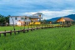 Campi nel paesaggio all'aperto della natura di Nan Thailand all'alloggio presso famiglie di Tanong Immagine Stock Libera da Diritti