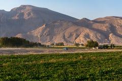 Campi nell'Iran Fotografia Stock Libera da Diritti