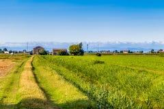 campi nella valle di Po Fotografie Stock Libere da Diritti