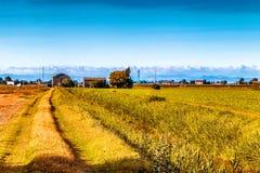 campi nella valle di Po Fotografia Stock