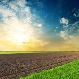 Campi neri e verdi di agricoltura nel tramonto Immagine Stock