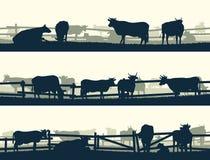 Campi orizzontali dell'azienda agricola dell'insegna di vettore con il recinto e gli animali da allevamento Fotografie Stock