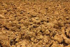 Campi rossi arati di agricoltura del terreno argilloso Fotografia Stock