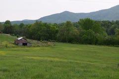Campi rurali occidentali dell'azienda agricola della montagna del paese di NC fotografia stock libera da diritti