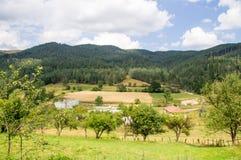Campi sui pendii delle montagne di Balcani in Bulgaria Immagine Stock