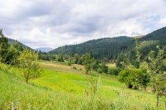 Campi sui pendii delle montagne di Balcani in Bulgaria Immagini Stock