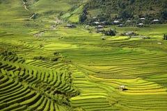 Campi tradizionali del terrazzo del riso in MU Cang Chai alla regione Vietnam di SAPA immagine stock