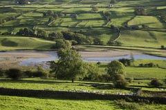 Campi in vallate Yorkshire Inghilterra di Yorkshire Fotografia Stock