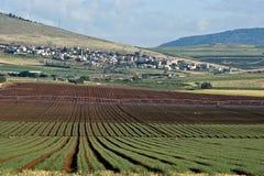 Campi in valle di Yezreel Fotografia Stock