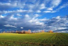 campi verdi Immagine Stock