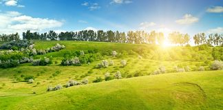 Campi verdi collinosi ed il sole su un cielo blu Ampia foto Fotografia Stock
