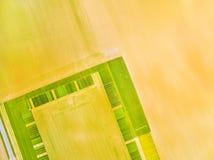 Campi verdi con il modello geometrico Immagini Stock Libere da Diritti