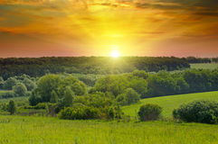 Campi verdi ed alba luminosa Fotografia Stock