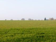 Campi verdi fertili nell'altezza della primavera Fotografia Stock Libera da Diritti