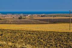Campi vicino a Mar Nero fotografia stock libera da diritti