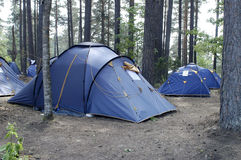 Camping. In forest. Blue tents Stock Photos