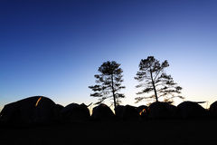 Camping. Silhouette of tent and tree Royalty Free Stock Photos