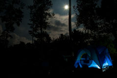 Camping. In the woods under the moonlight royalty free stock photos