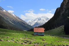 The camping on the Arashan river and the mount Palatka on the background near Karakol city, Kyrgyzstan Stock Photos
