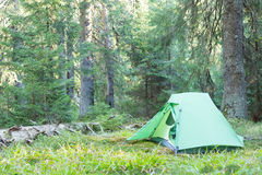 Camping area with multi-colored tents in forest. Royalty Free Stock Images