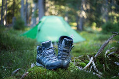 Camping area with multi-colored tents in forest. Stock Images