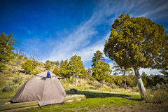 Camping in a Beautiful Park Royalty Free Stock Photography