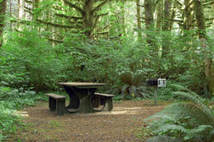 Camping bench. A bench in a woods campsite Stock Photography