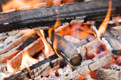 Camping bonfire with calx fragment Royalty Free Stock Photo