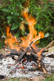 Camping bonfire close-up view Royalty Free Stock Photography