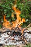Camping bonfire close-up view Royalty Free Stock Photography