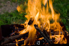 Camping bonfire in the the dark closeup view Stock Photo