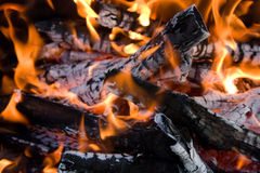 Camping bonfire Royalty Free Stock Photo