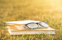 Reading in nature. Outdoor recreation reading a book. royalty free stock photo