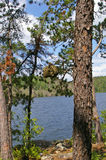 Camping in the Boundary Waters Canoe Area Royalty Free Stock Image