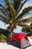 Camping on the Caribbean beach under a palm tree Royalty Free Stock Photos