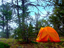 Camping in Colorado. Camping in Woodland park Colorado stock photo