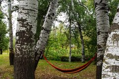 Camping. It is convenient to lieти. A hammock between the trees is convenient. Recreation near the water is a pleasure royalty free stock photography