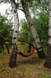 Camping. It is convenient to lieти. A hammock between the trees is convenient. Recreation near the water is a pleasure stock image