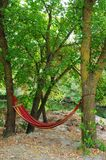 Camping. It is convenient to lieти. A hammock between the trees is convenient. Recreation near the water is a pleasure royalty free stock image